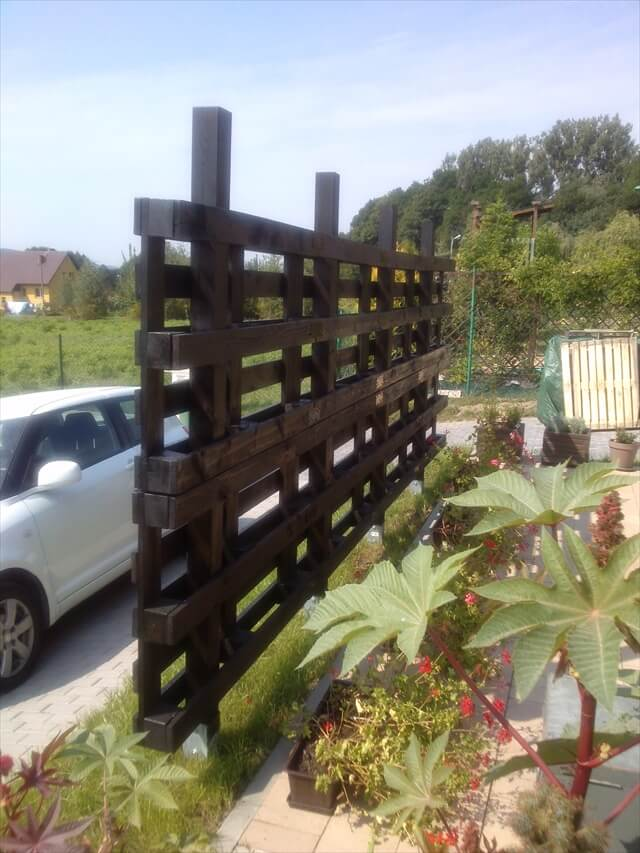 Beautiful Pergola out of Pallets for Garden