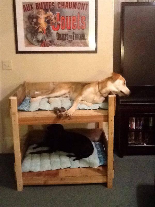 Diy Pallet Bunk Pet Bed 101 Pallets