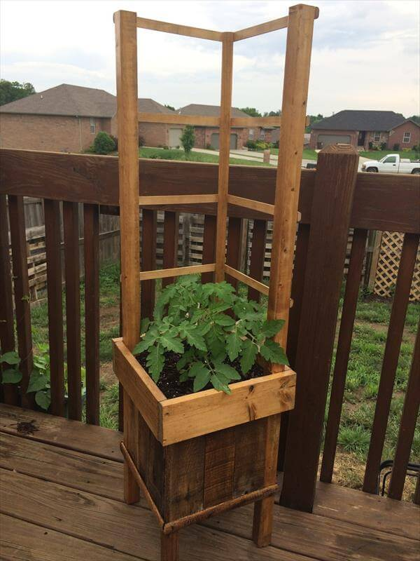 pallet raised planter with trellis