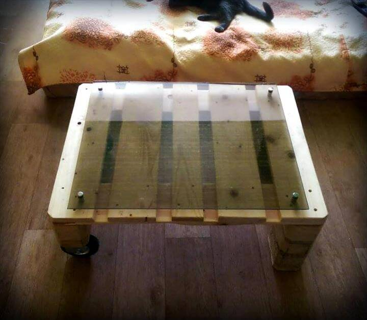 Modern Glass Coffee Table With Wheels: Mini Pallet Coffee Table With Glass Top