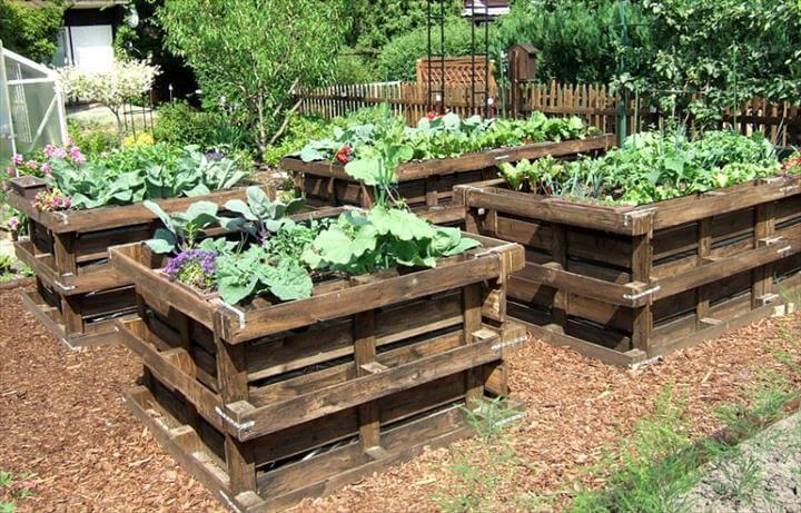 pallet raised garden beds - Garden Ideas Using Pallets