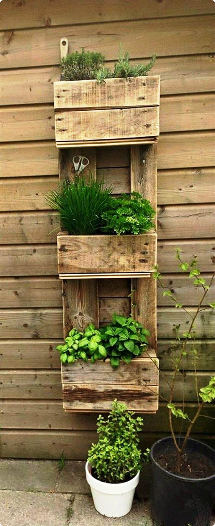 ... boost the visual of garden and also to give a natural touch to wall